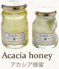 アカシア蜂蜜(国産100%)