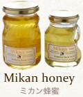 ミカン蜂蜜(国産100%)