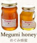 めぐみ蜂蜜(国産100%)