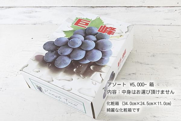 アソート ¥5,000-箱
