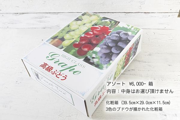 アソート ¥6,000-箱