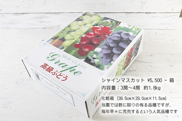 シャインマスカット ¥5,500円-箱