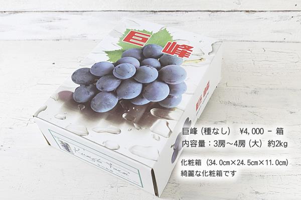 巨峰(種なし) ¥4,000-箱