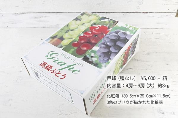 巨峰(種なし) ¥5,000-箱